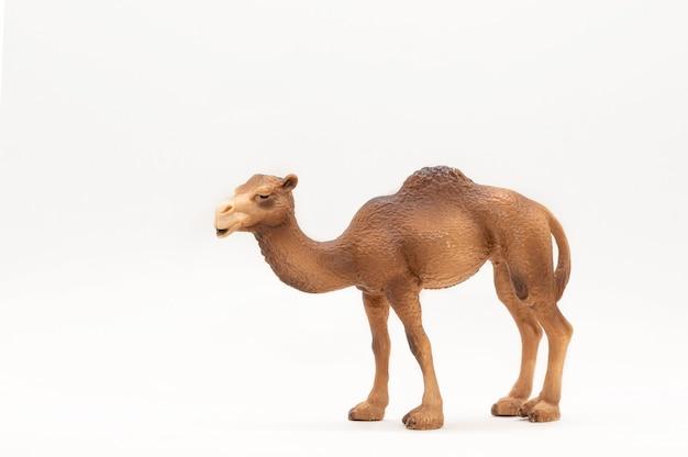 Kameel realistisch dierenspeelgoed