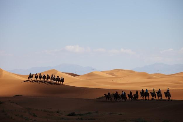Kameelcaravan in een woestijn in xinjiang, china
