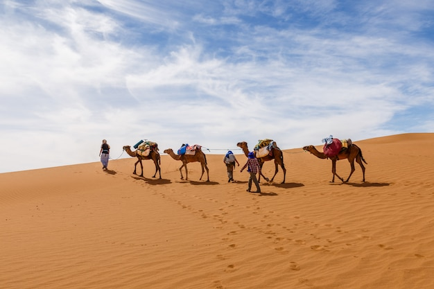 Kamelencaravan in de sahara woestijn