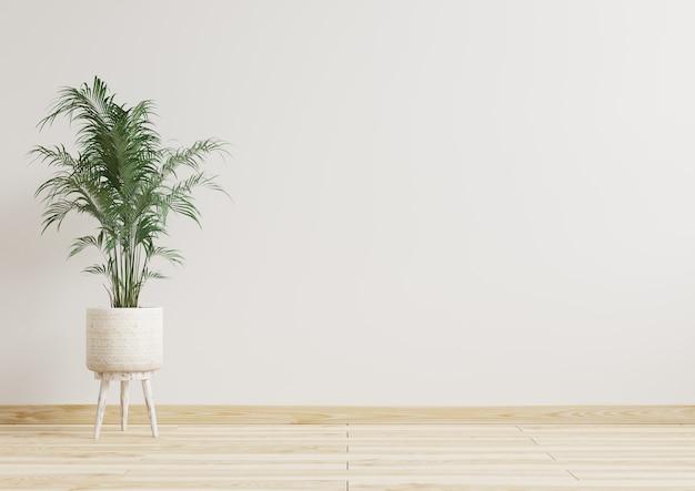 Kamer met witte muur en plant in pot