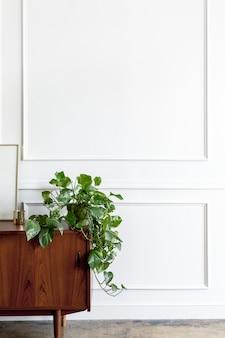 Kamerdecoratie met een plant