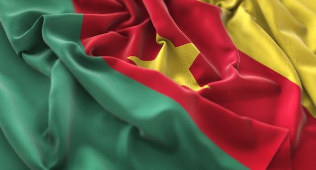 Kameroen vlag ruffled mooi wapperende macro close-up shot