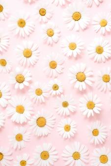 Kamille bloemen op pastel geel
