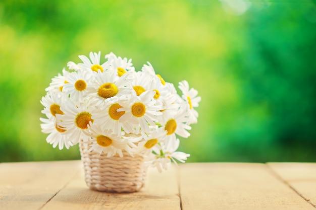 Kamille, madeliefjes boeket, boeket bloemen op groene natuur achtergrond.