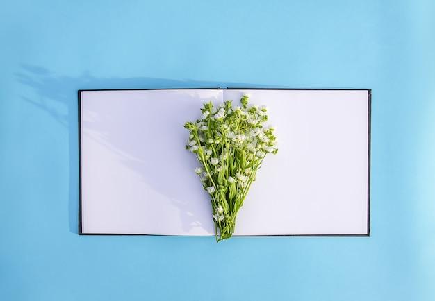 Kamille witte kleine tuin bloemen op geopende lege blocnote. lichtblauwe achtergrond.