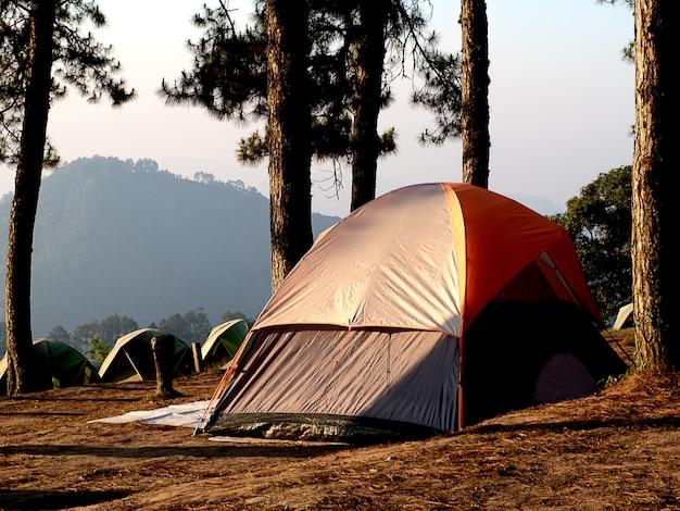 Kamperend in bos met tent in doi angkarng chiangmai thailand