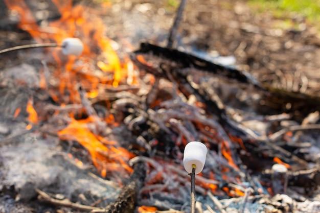 Kampvuur, marshmallows bakken op de brandstapel
