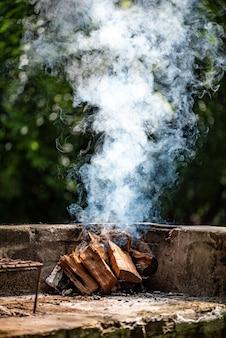 Kampvuur voor barbecue in het wild