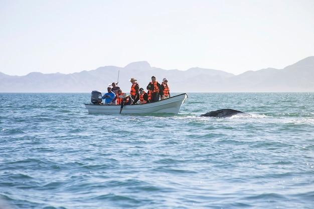 Kamtsjatka, rusland, februari 2017: groep mensen in reddingsvesten in boot en walvisstaart uit het water. zwem in de zee van japan en observeer de dierenwereld. echt avontuur russisch verre oosten. auteursrechtruimte