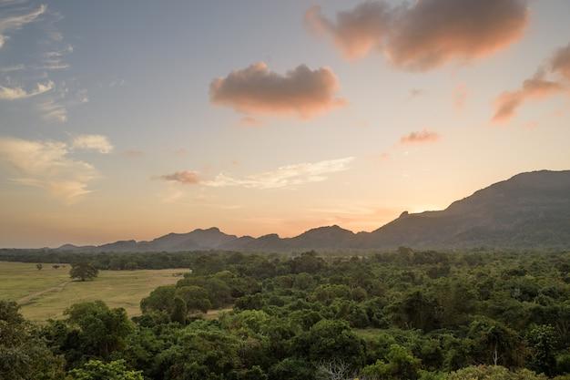 Kandalama nationaal park, dumbulla, sri lanka