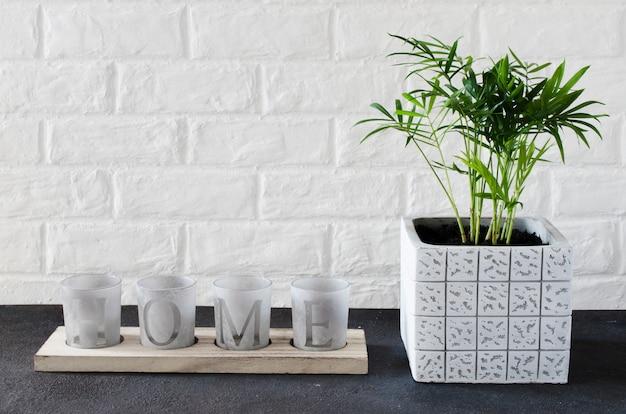 Kandelaars met de inscriptie huis en potplant chamaedorea elegans in de buurt van witte bakstenen muur.