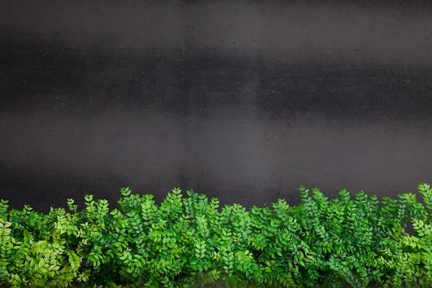 Kant van de weg groene struiken op zwarte achtergrond met copyspace