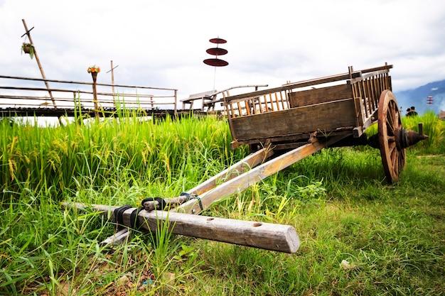 Kar te slepen over het rijstveld na het oogsten