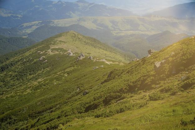 Karpaten gebergte op zomerochtend.