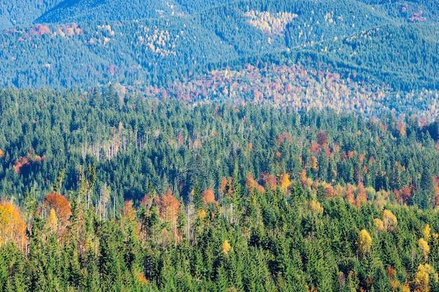 Karpaten zonnige berglandschap