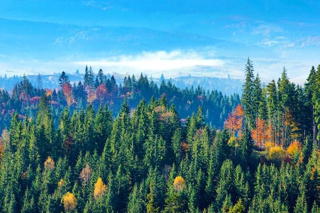 Karpatisch berg zonnig landschap