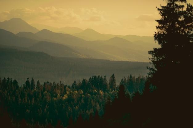 Karpatische bergen zonsondergang