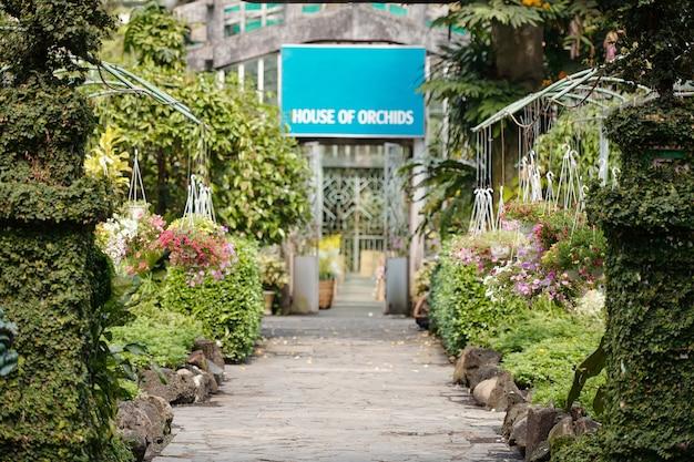 Kaseiland met aan weerszijden prachtige bloeiende petunia bloemen in hangende potten