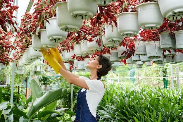 Kasmedewerker die planten controleert