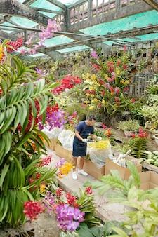 Kasmedewerker met handschoenen aan bij het controleren van bloeiende bloemen van aangeleverde planten