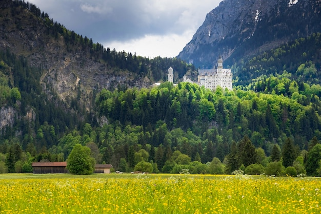 Kasteel neuschwanstein is een negentiende-eeuws romaans revival-paleis op een ruige heuvel