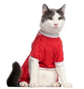 Kat gekleed op wit