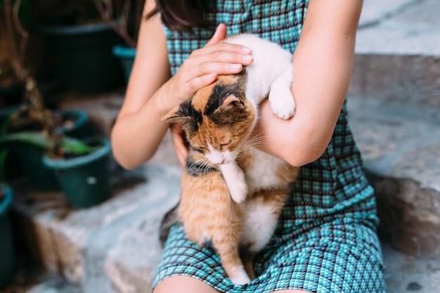 Kat in de handen van de vrouw