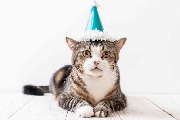 Kat met feestmuts