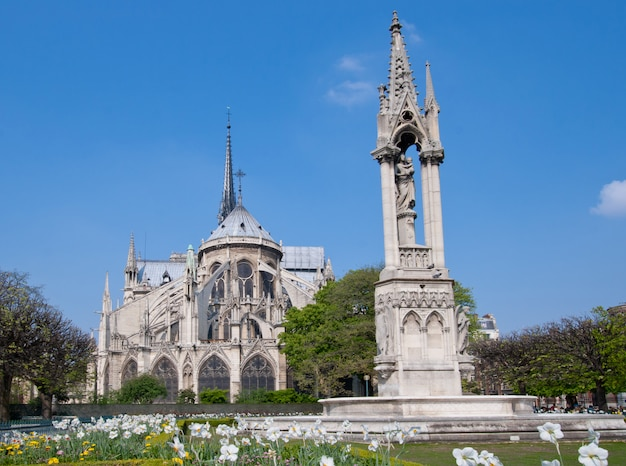 Kathedraal notre dame