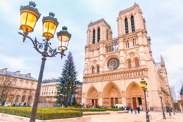 Kathedraal van notre dame de paris met kerstmis