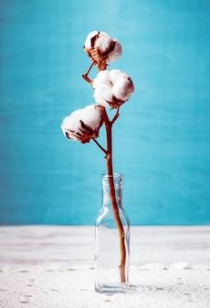 Katoenen bloem close-up in glazen fles. gezellige woondecoratie