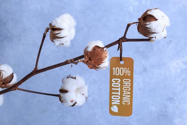 Katoenen bloemen met etiket organisch concept op grijs