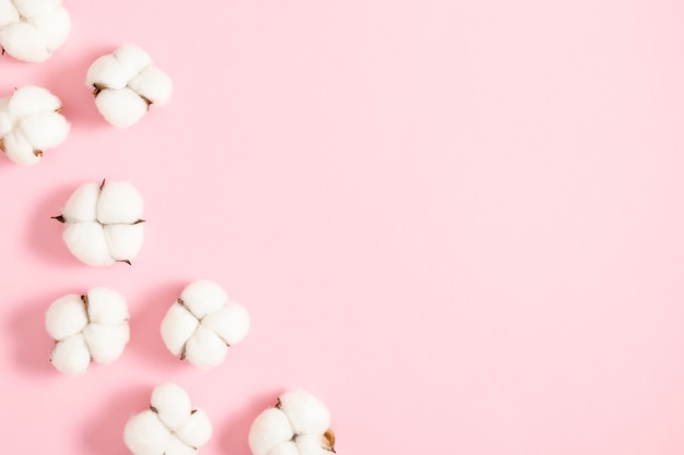 Katoenen bloemen op een pastel roze achtergrond