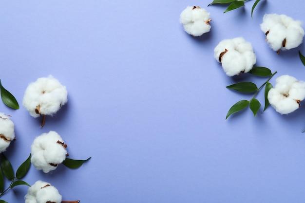 Katoenplant bloemen en bladeren op violet