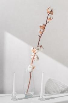 Katoenplant takken in vaas en witte kaarsen op een witte tafel
