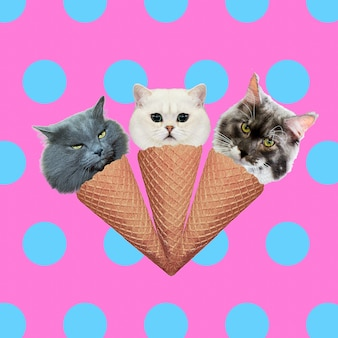 Katten ijs mix. hedendaagse kunstcollage. grappig fastfood-project