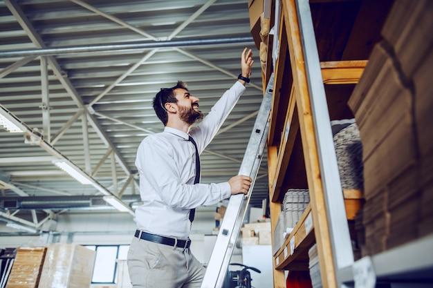 Kaukasische gebaarde grafische ingenieur die zich op ladder bevindt en doos probeert te bereiken