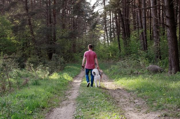 Kaukasische mens die een hond in de zomerbos loopt