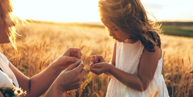 Kaukasische moeder en haar meisje die wat tarwezaden in een gebied houden tijdens een zonsondergang