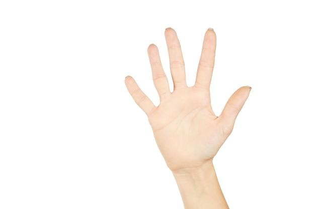 Kaukasische vrouwelijke persoon met open handpalm. nummer vijf. op een wit. gebaren concept