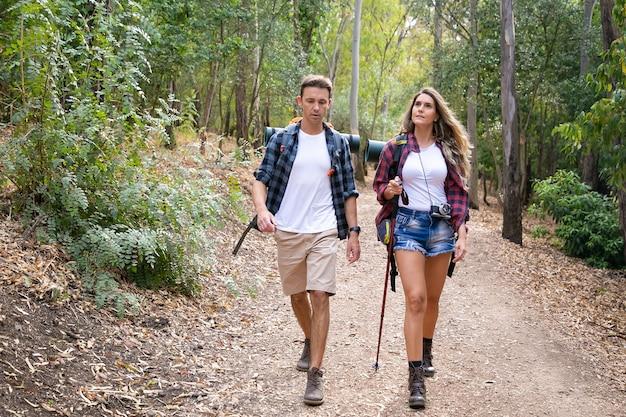 Kaukasische wandelaars wandelen of trekken op bospad omgeven door bergbomen. mooie vrouw en knappe man die samen door bos wandelen. toerisme, avontuur en zomervakantie concept