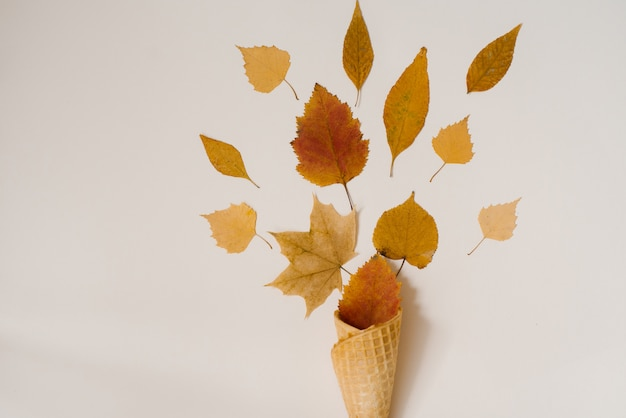 Kegel van wafelijs met droge vergeelde en rode bladeren