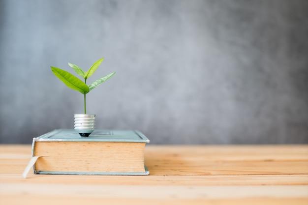 Kennis opgroeiend concept, kleine boom groeit van gloeilamp en groot boek op tafel