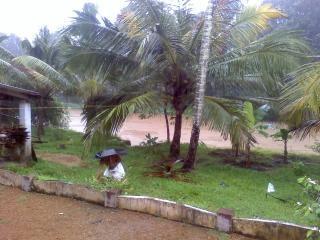 Kerala, het toerisme