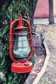 Kerosinelamp op boom, buitenshuis