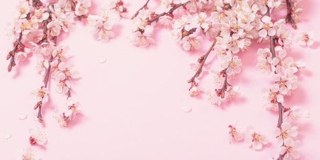 Kersenbloemen op roze papier