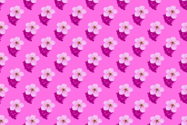 Kersenbloesem op roze water. concept, behang, stofontwerp. naadloos patroon