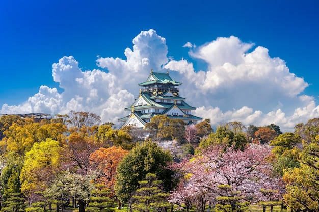 Kersenbloesems en kasteel in osaka, japan.