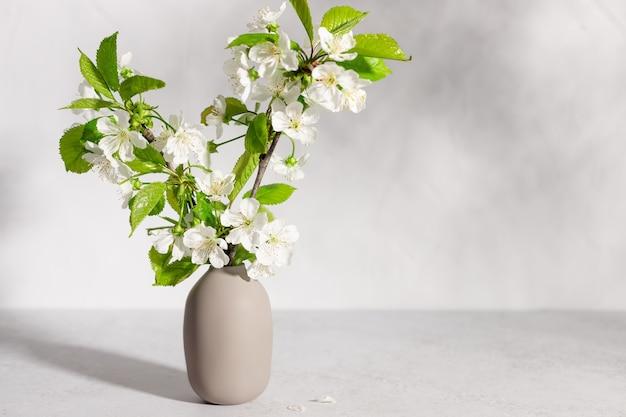 Kersenboom bloeit in beige vaas in zonlicht interieur design gezelligheid en decoratie concept