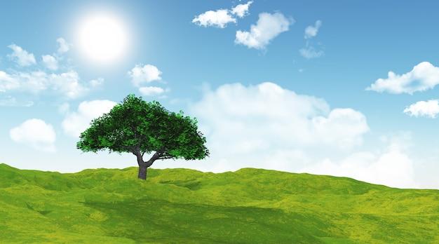 Kersenboom in een met gras begroeide landschap